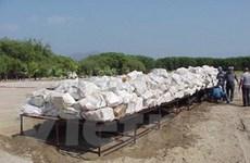 Cảnh sát Panama vừa thu giữ gần một tấn cocaine