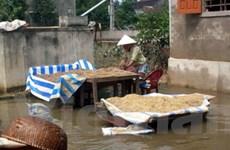 Thế giới tiếp tục ủng hộ người dân lũ lụt miền Trung