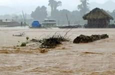 Lũ khẩn cấp trên các sông Khánh Hòa, Ninh Thuận