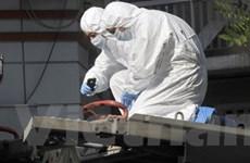 Cảnh sát Hy Lạp hủy một gói bưu kiện chứa bom