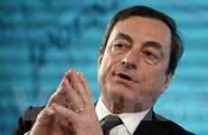 Các nước Eurozone đề cử chủ tịch mới của ECB