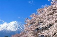 Du khách nước ngoài đến Nhật Bản giảm hơn 60%