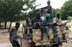 Sudan: Giao tranh ác liệt tái diễn ở bang Blue Nile
