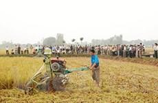 Huế được tài trợ 4 triệu USD phát triển nông thôn