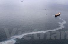 Dầu tràn lan rộng ở khu bảo tồn biển New Zealand