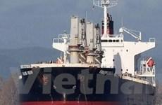 Sẽ tiếp tục tìm kiếm thuyền viên tàu Vinalines Queen