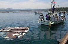 Sóng thần ở Nhật đã cuốn 5 triệu tấn rác ra biển