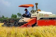 Miền Nam cơ bản thu hoạch xong lúa Đông Xuân