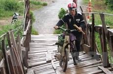Lâm Đồng: Hơn 100 cây cầu xuống cấp cần thay thế