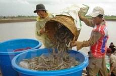 Miền núi phía Bắc phát triển nuôi thủy sản nước ngọt