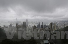 Đặc khu hành chính Hong Kong tê liệt vì bão Utor