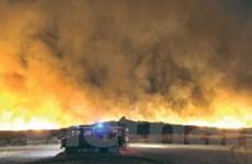 Tây Ban Nha: Cháy rừng tại đảo nghỉ mát Majorca
