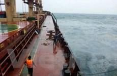 Khẩn trương lai dắt tàu Panama vào khu vực an toàn