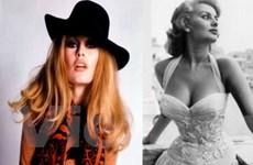 Bardot và Loren: Hai ngôi sao, 2 lối cuộc đời