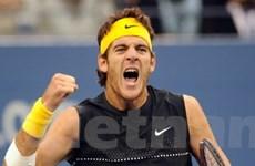 Del Potro vào bán kết giải quần vợt Mỹ mở rộng