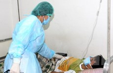 Việt Nam ghi nhận 6.478 ca H1N1, 7 ca tử vong