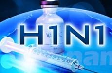 Thế giới nỗ lực ngăn chặn cúm A/H1N1 lan rộng