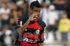 Flamengo cận kề ngôi vô địch Brasileirao 2009
