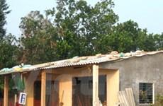Chữ thập Đỏ quốc tế giúp xây dựng nhà tránh bão