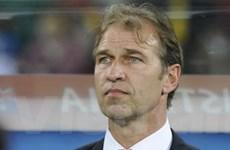 Australia tìm huấn luyện viên mới sau World Cup