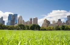 APEC nhất trí xây các thành phố có khí thải thấp