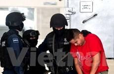 Mexico bắt giữ kẻ cầm đầu băng mafia khét tiếng