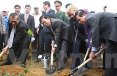 Chủ tịch nước phát động Tết trồng cây nhớ ơn Bác