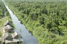 FAO hỗ trợ Việt Nam trong lĩnh vực quản lý rừng