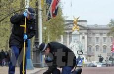 Anh tăng cường an ninh cho hôn lễ Hoàng gia