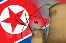 Gia tăng nỗ lực ngoại giao về hạt nhân Triều Tiên
