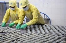 Cần hơn 29.000 tỷ đồng phát triển ngành thủy sản