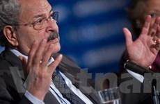 Ai Cập rút lại đề nghị vay 3 tỷ USD từ IMF và WB