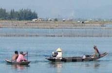 Xây hệ thống bảo vệ thủy sản đầm phá Tam Giang