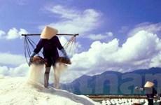 """Bạc Liêu: Giá muối tăng giúp """"giải phóng"""" muối tồn"""