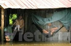 Kiên Giang: Mưa to, gió lớn nhấn chìm nhiều tàu cá