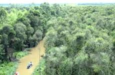 Đánh giá đúng thực trạng để quản lý tốt rừng