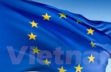 DN Việt cần liên kết để cạnh tranh ở thị trường EU