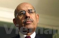 Ông El-Baradei tỏ ý từ bỏ tranh cử tổng thống Ai Cập