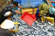 Phê duyệt chương trình bảo vệ nguồn lợi thủy sản