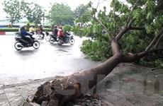 Các địa phương khắc phục hậu quả cơn bão số 1