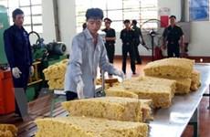Đầu tư phát triển ngành công nghiệp cao su chế biến