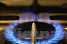 Báo động về tình trạng sang chiết khí gas bừa bãi