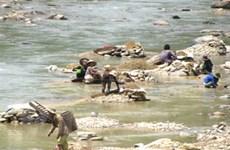 Đà Nẵng: Ô nhiễm nguồn nước do khai thác vàng