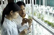 Chính phủ hỗ trợ phát triển cho doanh nghiệp KHCN