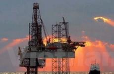 Hội nghị dầu khí ASEAN lần đầu tổ chức ở Việt Nam
