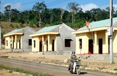 Gần 19.000 hộ dân tộc thiểu số ổn định cuộc sống
