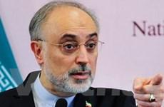 Iran không để các cường quốc áp đặt tại Trung Đông