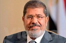 Uy tín Tổng thống Ai Cập Morsi tiếp tục tăng mạnh