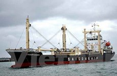 Cứu thuyền viên tàu chở gỗ VN bị chìm ở Sri Lanka