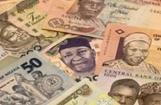 IFC phát hành trái phiếu bằng đồng nội tệ châu Phi